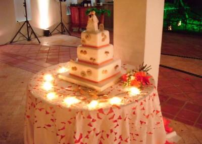 Gina Castillo-Alvarez Designs for Team Bride-Cartagena Wedding -Boda en Cartagena,580106_343780609023697_1224761420_n